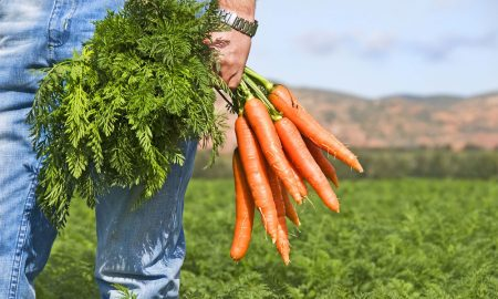 I-can-only-hold-9-carrots