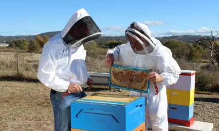 Bee Biosecurity