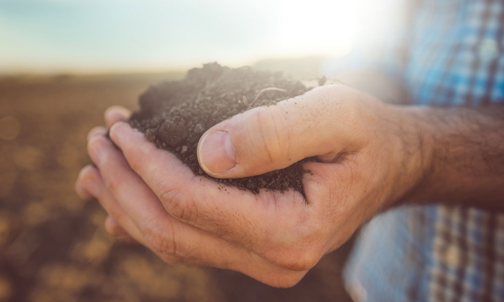 soil agriculture land stock image