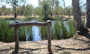 glenelg-river-post