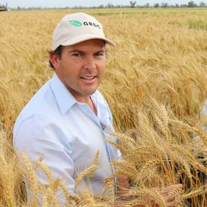 GRDC Northern Panelist Jack Williamson is encouraging growers to consider newly released wheat varieties this season.