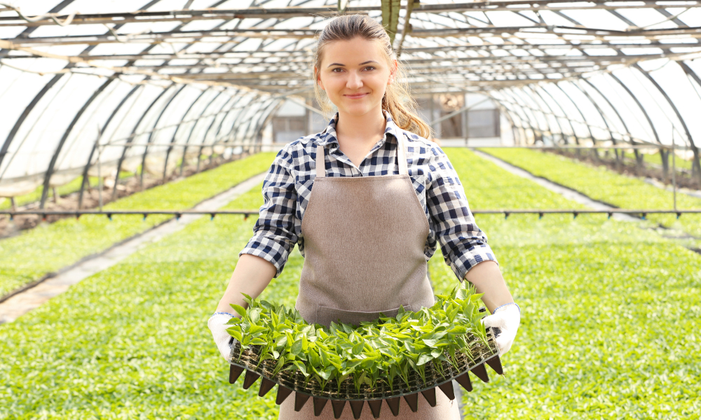 woman agriculture stock image