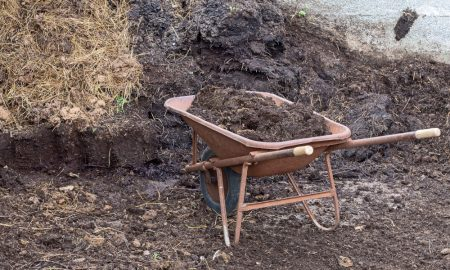 compost farm wheelbarrow stock image