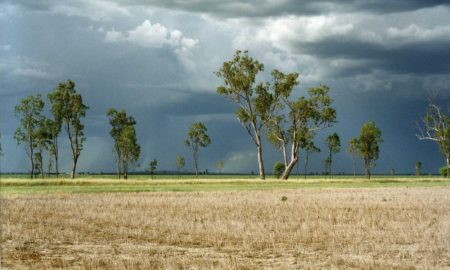 Storms on the Jimbour plains. Improved knowledge of stored soil water, combined with using crop models like APSIM, and latest climate forecasts all help to better understand crop risks and likely outcomes. Such knowledge also helps with many decisions like in-crop fertiliser use.