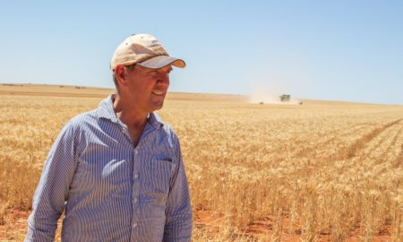 Bill Crabtree tested new Havoc wheat in a large-scale farm trial