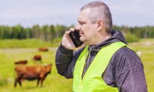 phone farmer stock image