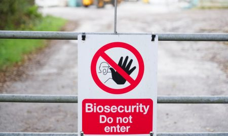 biosecurity stock image