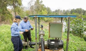 Fish attractors to reely help anglers - GetFarming