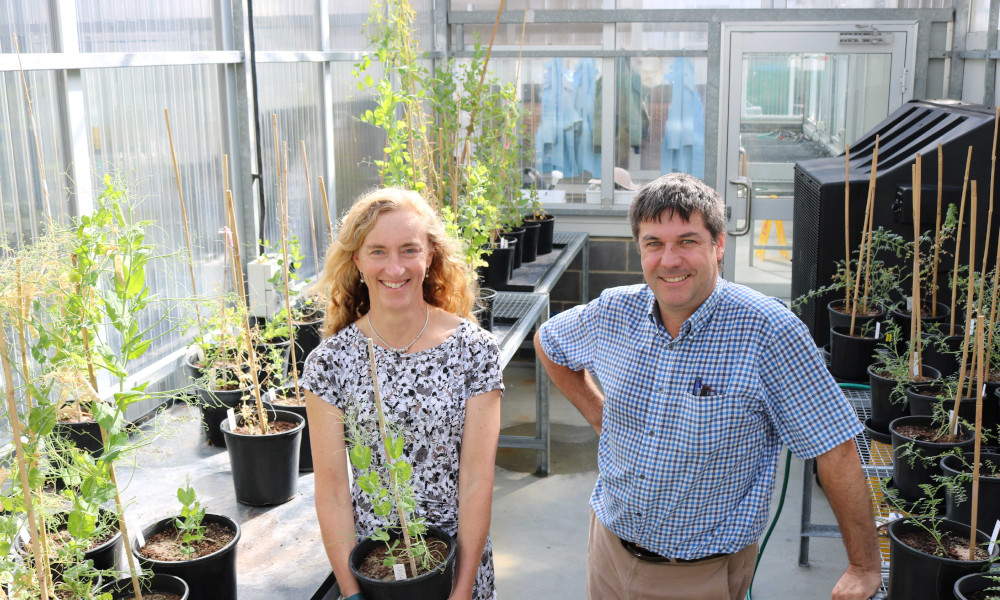 Dr Sarita Bennett and Dr Rob Lee, Centre for Crop and Disease Management