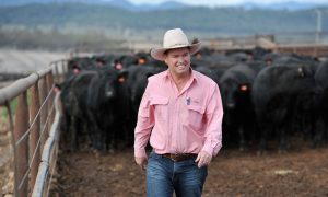 Andrew Talbot GM Killara Feedlot
