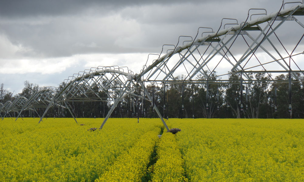 Central Gippsland irrigation funding