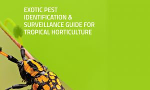 Exotic Pest Identification and Surveillance Guide for Tropical Horticulture