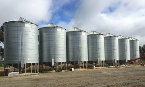 Hygiene strategies will help stop stored grain insects from becoming a problem. Image supplied by Jim Moran.