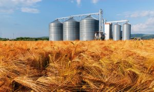 grain storage infrastructure